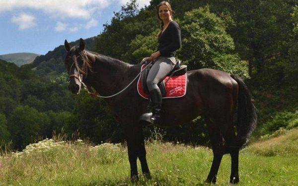 Кабардинская кінь