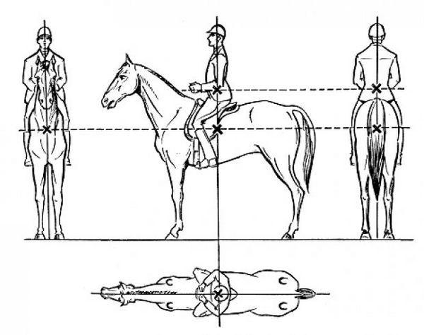 Як сидіти на коні
