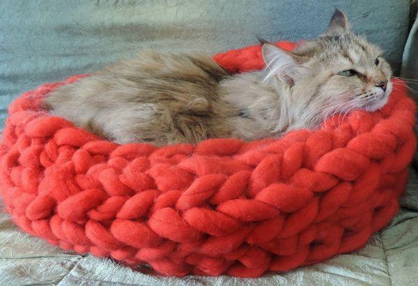 Як легко і швидко зробити лежанку для кішки своїми руками