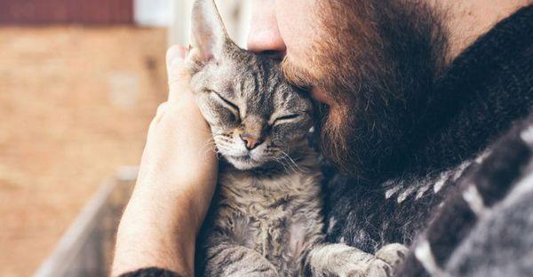 Чоловік обіймає кішку