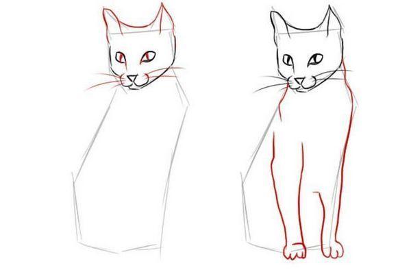 Як намалювати сидячу кішку в повний зріст