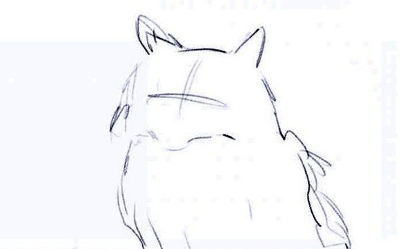 Як намалювати пухнасту кішку