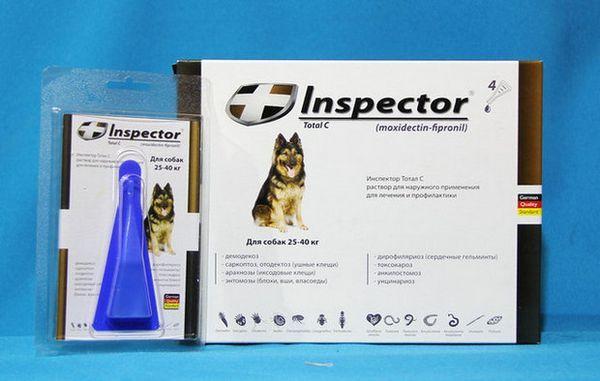 інспектор
