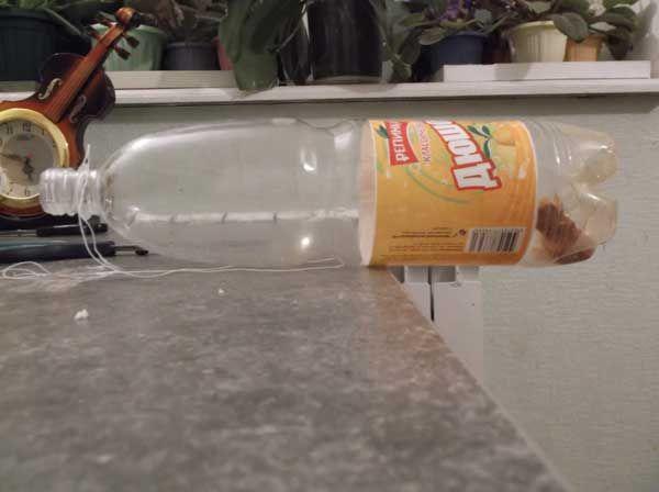 встановлена пастка для мишей з пластикової пляшки