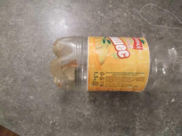 приманка для мишей в пластиковій пляшці