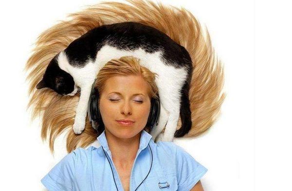 Кот спить на голові господині
