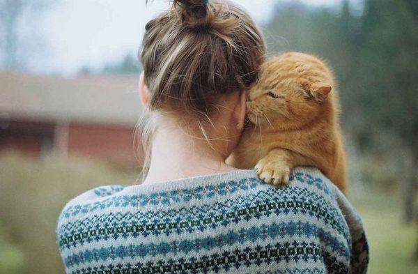 Кот вилизує вухо господині