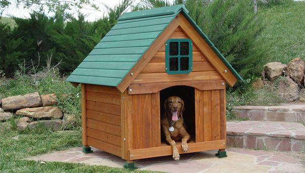 расположенте будки, установка Пудков, будка для собаки своїми руками, нюанси будівництва будки, рекомендації по будівництву будки, будинок для собаки, як зробити будинок для собаки своїми руками