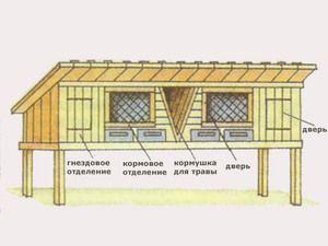Як самим побудувати крільчатник