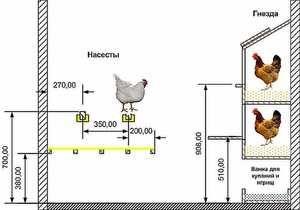 Облаштування курника - приблизна схема