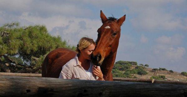 Налагодження контакту з конем