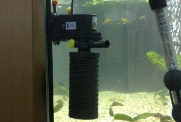 Внутрішня помпа в акваріумі