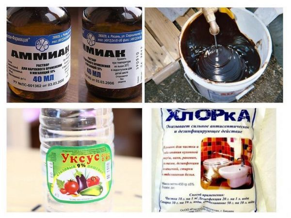 Побутова хімія від гризунів