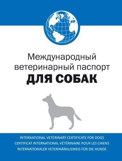 Международен ветеринарен паспорт за куче