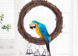 Как да си направим люлка за папагал
