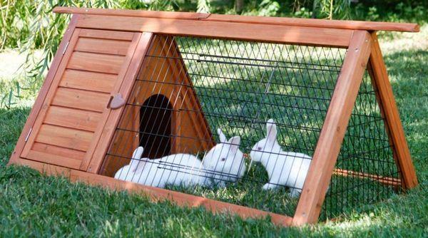 Клітка для декоративних кроликів