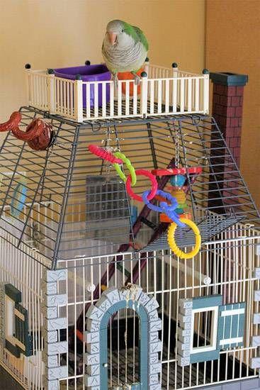 Клітка з іграшками для папужки