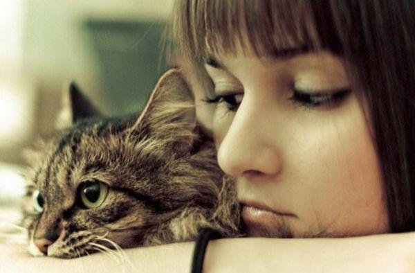 Паразити у кішки