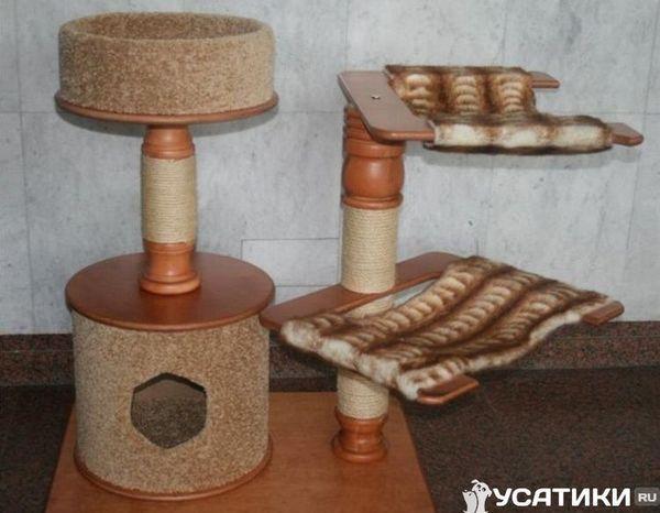 Дизайн за двама домашни любимци