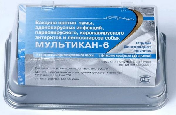 «Мультікан-6»