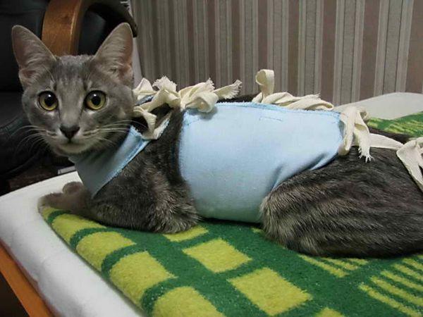 Після операції