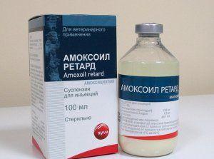 Характеристики на лекарството `amoxoyl retard`