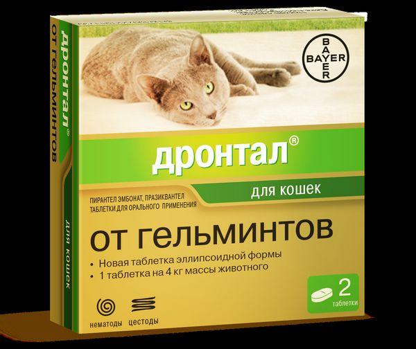 Podrobný návod na použitie drontalu pre mačky