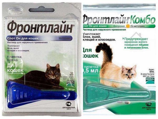 Повна інструкція із застосування препарату Фронтлайн для кішок