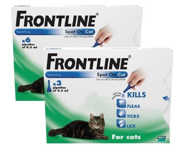 Препарат Фронтлайн захищає вихованців від бліх і кліщів