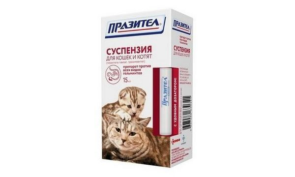 `Prazitel` suspenzia pre mačky a mačiatka: návod na použitie