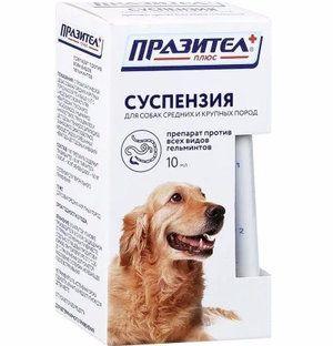 `Празітел` (суспензія проти гельмінтів) для середніх і великих порід собак: інструкція, дозування
