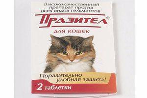 «Празітел» (в таблетках) для кішок: від чого і як застосовувати