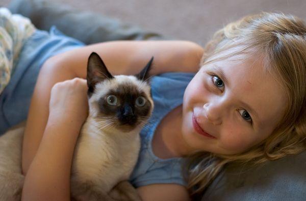 Детето иска да има домашен любимец: какво да правя?