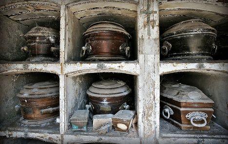 Нов крематориум за домашни любимци се отвори в челтнам