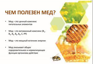 Де використовується отрута бджоли