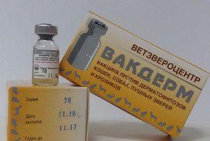 Вакцина «Вакдерм»