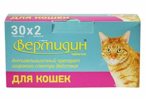 Vermidín pre mačky: vlastnosti lieku a jeho dávkovanie