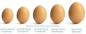 Курячі яйця різних категорій