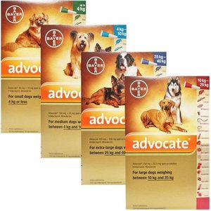 Veterinárny právnik pre psy: dávkovanie, pokyny