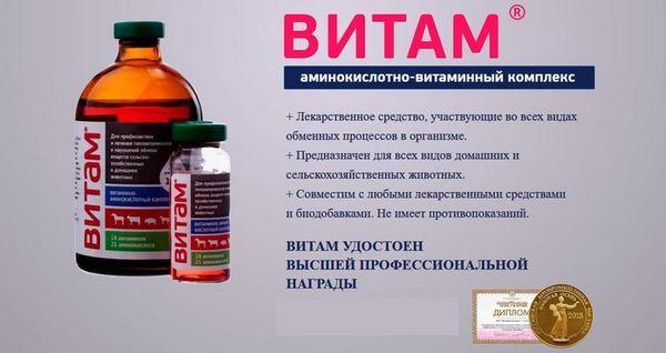Витамин за кучета
