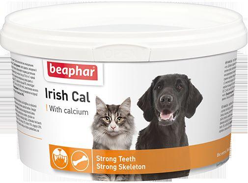 Vitamíny pre mačky: ktoré si zvoliť a ako dať