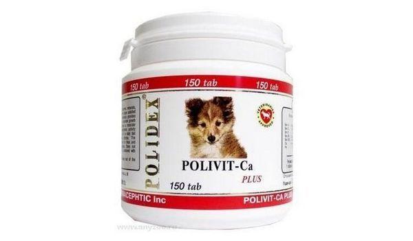Polyvit Calcium Plus
