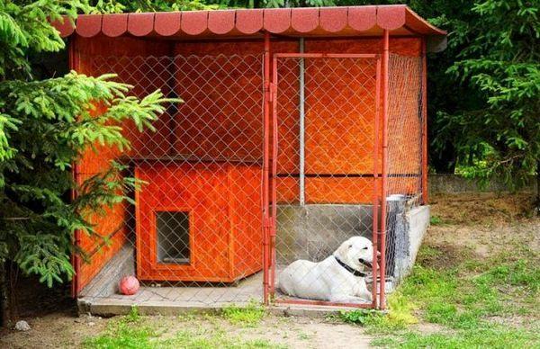 Вольєри для собак - це не просто частина ділянки, обгороджена сіткою-рабицею. Це, по суті, житло собаки, де їй має бути комфортно. Вона в вольєрі буде проводити більшу частину дня, ховатися від сонячних променів, дощу і морозу, гуляти, їсти, справляти природну потребу відпочивати, прогулюватися