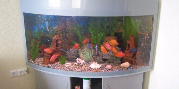 акрилової акваріум