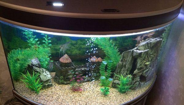 панорамний акваріум