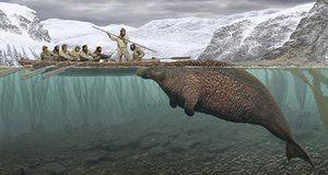 Полювання людей на морських корів