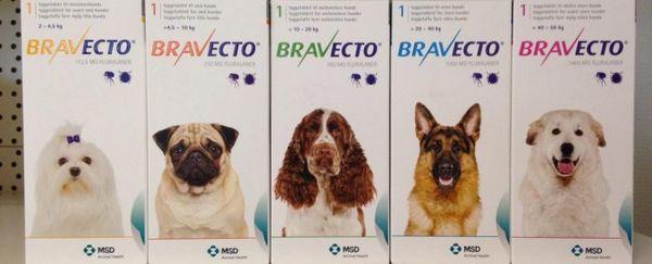 Žuvacie tablety bravecto pre blchy a kliešte pre psov